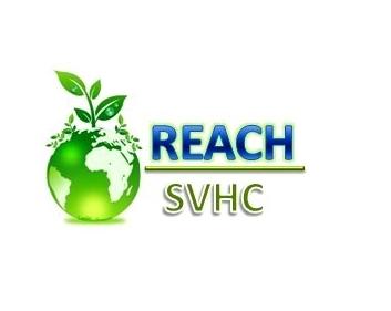 reach最新标准认证
